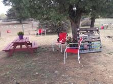 picnic area 3